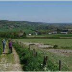 Easy tempo heuvelland zicht